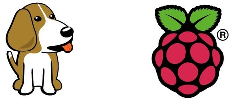 Raspberry Pi or BeagleBone Black - Michael Leonard | InternetdelasCosas | Scoop.it