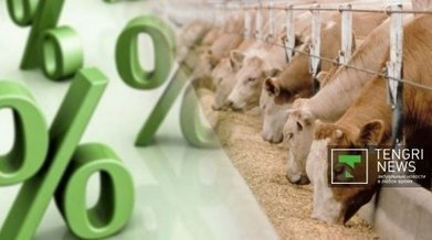 Kazakh farmers face stringent loan terms, development of agribusiness inhibited - Tengrinews   Agribusiness   Scoop.it