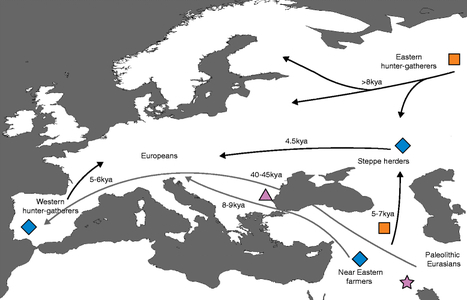 Ancient DNA and the rewriting of human history: be sparing with Occam's razor | Milhares de milhões de anos... a mesma Terra ! | Scoop.it