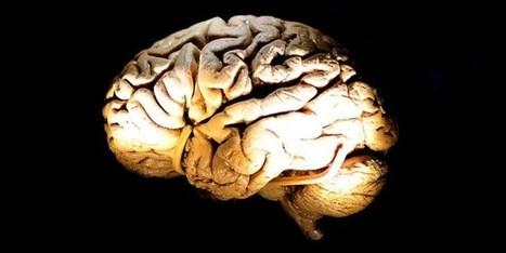 Des étudiants israéliens informatisent le diagnostic de Parkinson | Neurologie S.V.T | Scoop.it