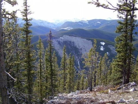 10 Great Hikes in Kananaskis Elbow – Hiking Alberta | Exploring the Rocky Mountians | Scoop.it