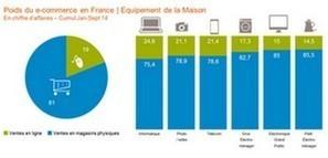Le marché e-commerce des biens d'équipement de la maison et biens culturels en 2014 | E-commerce | Scoop.it