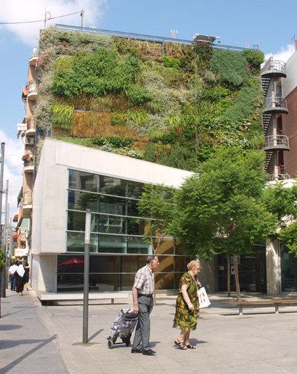 El Jardín Vertical situado junto a la biblioteca infantil filtra 220 ... - Costa Comunicaciones | Jardines Verticales y azoteas verdes. | Scoop.it