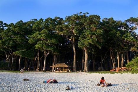 The Lesser Known and Isolated Pathi Level Beach of Andaman | Tourism in Kerala | Scoop.it