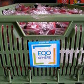 Avec sa technologie, Eqosphere lutte contre le gaspillage alimentaire | Agriculture urbaine, architecture et urbanisme durable | Scoop.it