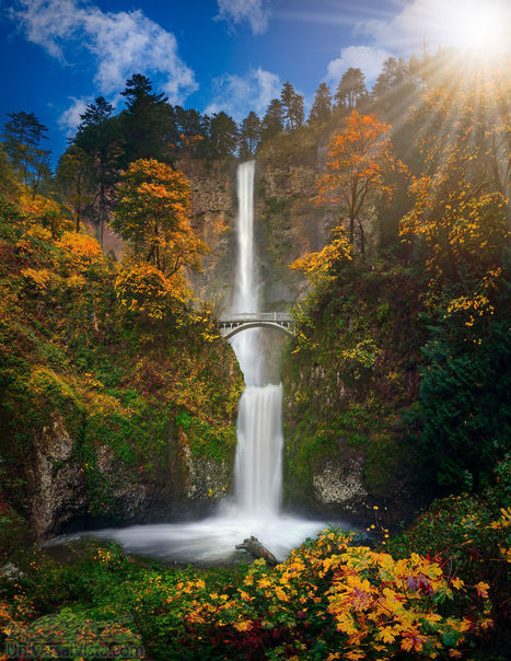 Multnomah Falls in Autumn colors by William Lee | My Photo | Scoop.it