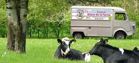 L'essor du crowdfunding dans l'agriculture - Le Figaro   Le Fil @gricole   Scoop.it
