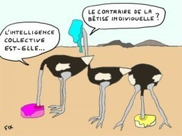 De l intelligence collective ..quelques concepts fondamentaux | Coaching de l'Intelligence et de la conscience collective | Scoop.it