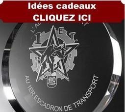 Centrafrique : «La logistique est lamentable», dit la mère de deux soldats français | Logistique et Transport GLT | Scoop.it