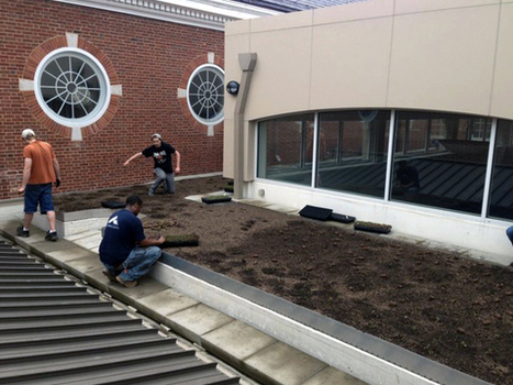 University of Maryland sustainability fund helps green programs take root | Restorative Developments | Scoop.it