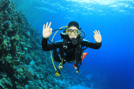 1-Day Scuba Diving Courses | All about water, the oceans, environmental issues | Scoop.it