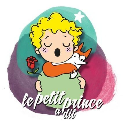 Vidéo | Format | Le Petit Prince a dit ... | droit et scolarisation | Scoop.it
