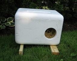 DIY: Warm Winter Cat Houses | Pet News | Scoop.it