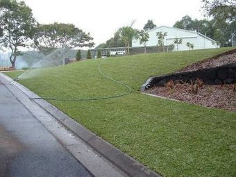 Daleys Turf - Lawn Turf Supplier Queensland Australia | Lawn Turf Supplier Queensland Australia | Scoop.it