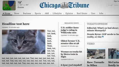 LOOK: Adorable Kitten Hijacked The News | Les chats c'est pas que des connards | Scoop.it