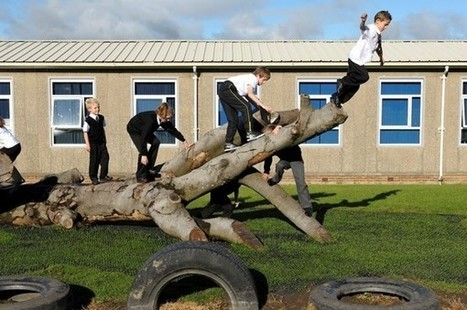 Fallen trees as climbing frames are treemendous fun for schoolchildren | treetools | Scoop.it