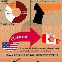 Guns In The USA | Visual.ly | Business | Scoop.it