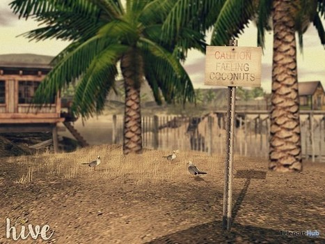 Caution Falling Coconuts Sign June 2016 Group Gift by hive | Teleport Hub - Second Life Freebies | Second Life Freebies | Scoop.it
