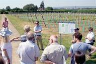 Challenges for entrants to growing UK #wine industry | Vitabella Wine Daily Gossip | Scoop.it