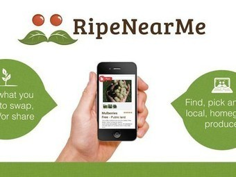 Find, swap, share, or sell fresh local homegrown food and wild edibles with Ripe Near Me | Vertical Farm - Food Factory | Scoop.it