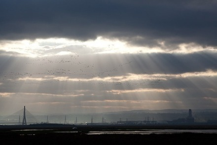 In the Wilderness of Wirral - Caught by the River | Mythogeography | Scoop.it