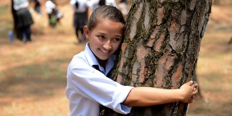 Thousands In Nepal Hug Trees In World Record Bid | Heal the world | Scoop.it