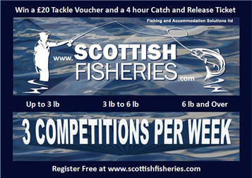 Scottish Fisheries | The list of Trout Fisheries in Scotland | Speyfly.co.uk - Fishing Tours & Holidays | Scoop.it