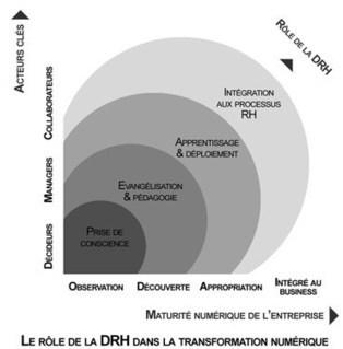DRH & Transformation : quel rôle jouer ?   Solutions locales   Scoop.it