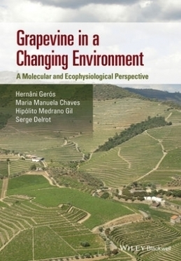 INRA - Grapevine in a Changing Environment | qqs infos sur le centre Inra Montpellier | Scoop.it