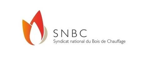 Actualites energie | Bois de chauffage : le SNBC s'attaque à la ... - Zepros | Developpement Durable et Ressources Dumaines | Scoop.it