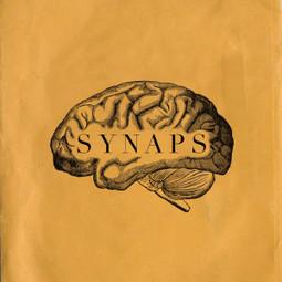 SYNAPS - Un webdocumentaire de Yaël André | Webdocs typiques | Scoop.it