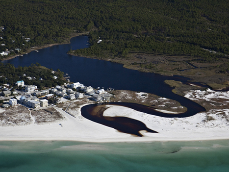 Florida by Land: Explore Geological Wonders | Conformable Contacts | Scoop.it