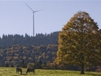 Green energy would save EU trillions by 2050: report - TuoiTreNews | Environmental Permitting and Compliance | Scoop.it