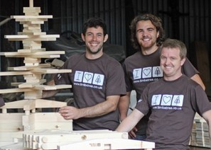 Wooden Christmas tree 'cuts your carbon footprint' | Energy News | Scoop.it