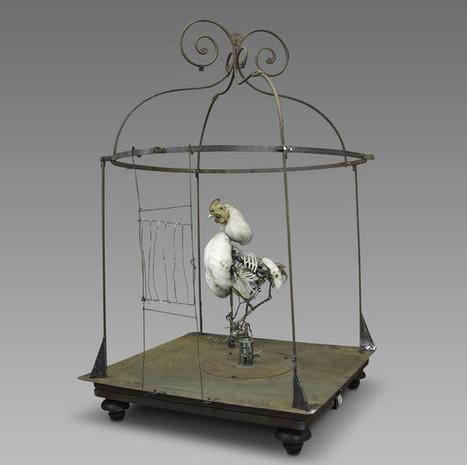 Les machines extravagantes de Gilbert Peyre à la Halle Saint Pierre | CULTURE, HUMANITÉS ET INNOVATION | Scoop.it