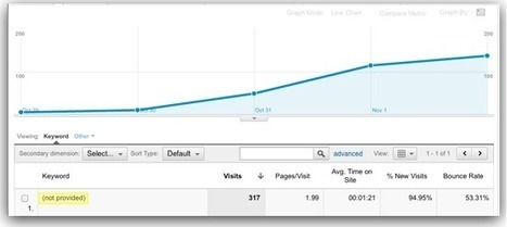 Google's (not provided) Keywords - #1 Converting Phrase in Analytics | Online Marketing Resources | Scoop.it