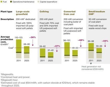 Can bioenergy replace coal? | Timberland Investment | Scoop.it