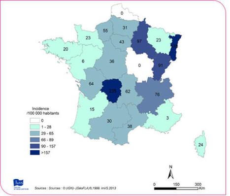 Tiques: l'impossible cartographie delamaladie deLyme | Alsace Actu | Scoop.it