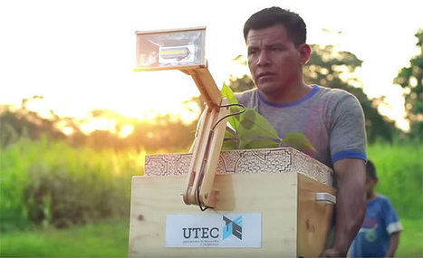 """""""Plant Lamps"""" Turn Dirt and Vegetation into a Power Source 