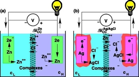 Salinity-gradient-power cell's surprisingly high voltage gives it best cost-per-watt of its kind | Science technology and reaserch | Scoop.it