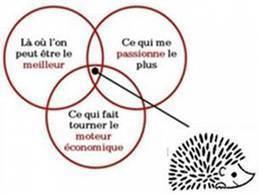 Coaching : Le concept du hérisson | RH Kurt Salmon | Coaching, Training and HR Evolution | Scoop.it