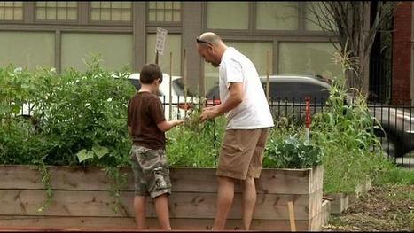 Parkland community garden starts to bloom - WDRB | Urban Gardening | Scoop.it