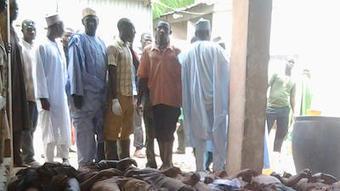 Report: 950-plus rebel suspects in Nigeria died in custody this year   Africa   Scoop.it