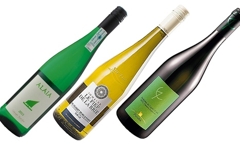 Le Marche Wines on the UK Market | Verdicchio: Wine that work with seafood | Wines and People | Scoop.it