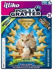 Un chat mosellan s'affiche sur le nouveau jeu «Poils à Gratter» de la Française des jeux! | CaniCatNews-actualité | Scoop.it