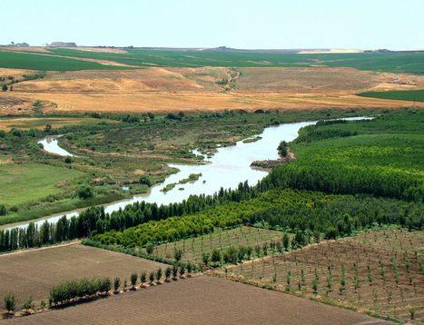農業把養份帶進河流,把碳排向天空 | 孵個小故事 | Scoop.it