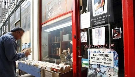 Le livre électronique ? Une imposture qui nous menacent, libraires ... - Le Nouvel Observateur | UseNum - Culture | Scoop.it