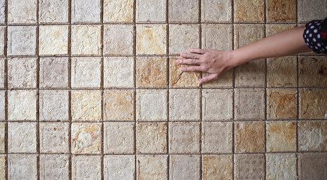 (Indonésie) Bio-construction : une société invente des briques révolutionnaires en champignon ! - CitizenPost | Chimie verte et agroécologie | Scoop.it