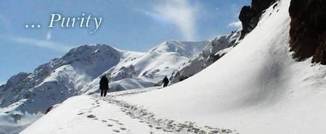 Iran travel visa | Iran cultural tour | Scoop.it