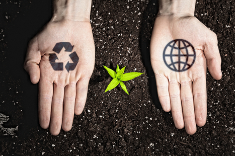 12 Green Business Ideas for Eco-Friendly Entrepreneurs | Toxic Products & Green solutions | Scoop.it